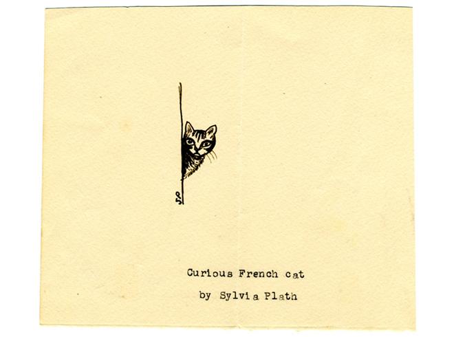 Sylvia plath cat