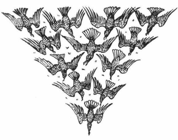Twelve brothers crane